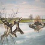 Flussarm am Niederrhein Mai 87 Aquarell 2