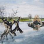Flussufer mit Weiden 1987 Aquarell auf Bütten