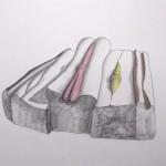 Massen und ihre Fremdkörper  Bleistift - Buntstifte 1994